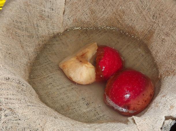 делаем яблочный сидр в домашних условиях